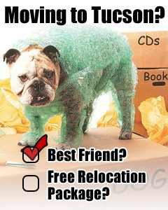 Get Your Free Relocation Package Here!
